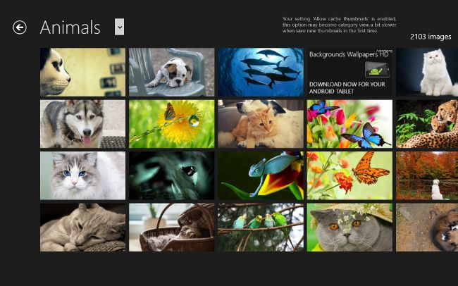 Backgrounds WallpapersのAnimalsカテゴリー