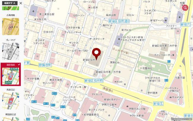 MapFan 道路強調
