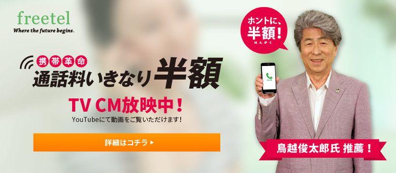 freetel いきなり半額