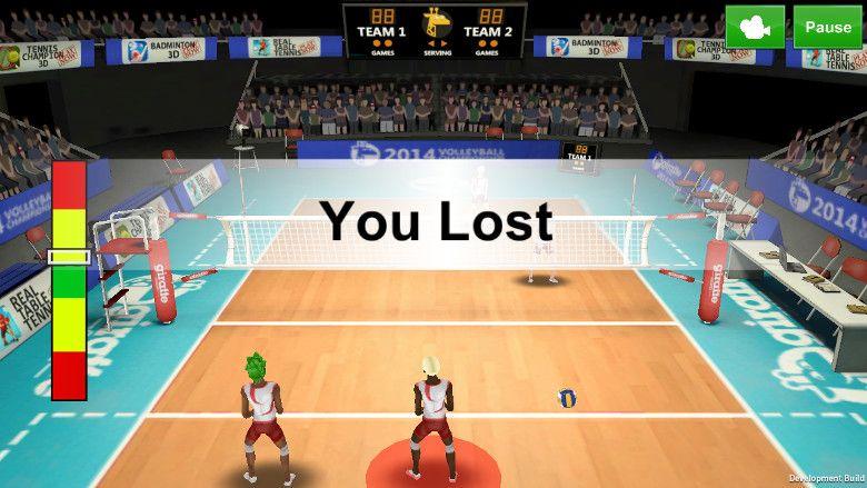 Volleyball Champion 2014 負け