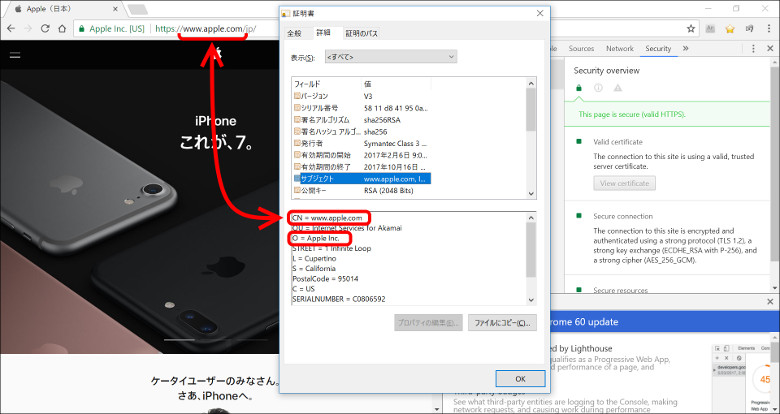 サイトの証明書 Chrome6