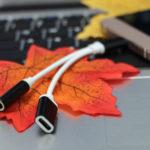 USB Type-Cから Type-C & 3.5mmジャック に分岐する充電ケーブル - Banggoodなら激安!これからのスマホの必需品か(natsuki)