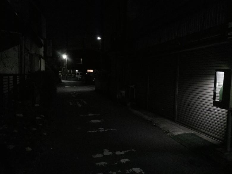 暗所での撮影は厳しい印象