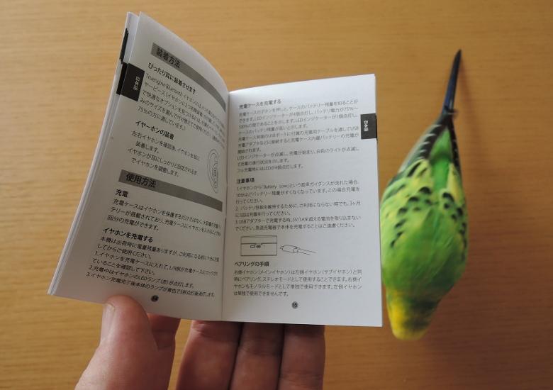 SoundPEATS Truengine 取説の日本語