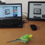 Paperlike Pro touch レビュー - 13.3インチE-ink採用のPCディスプレイ。待望のタッチパネル!応答速度も大きく改善!仕事用に使えそう(実機レビュー)