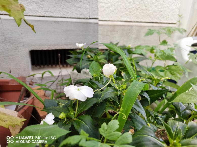 花のAIオンオフ